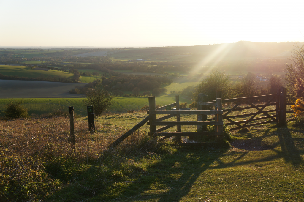 Walks in the South Downs